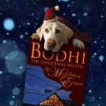 Bookmark: Bodhi the Christmas Helper