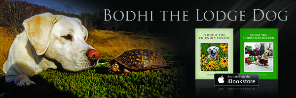 bodhi_post_graphic_sm