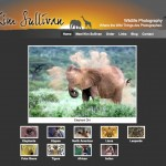 Kim Sullivan - Photographer